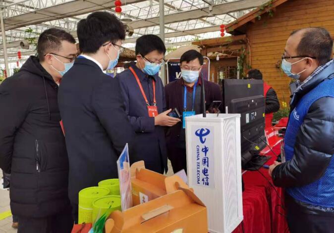 连城朋口:中国电信科技下乡受关注